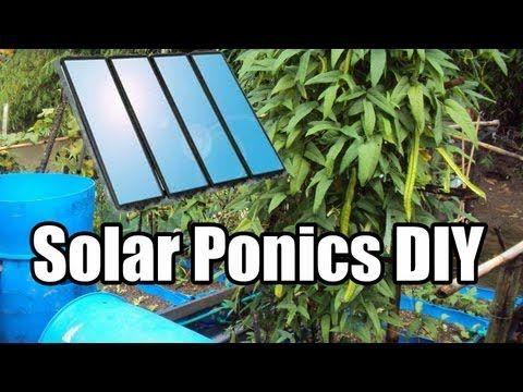 How to Build a solar powered IBC tote Aquaponics System CHEAP and EASY. BLOG: http://TheUrbanFarmingGuys.com Facebook: http://on.fb.me/QALgpS