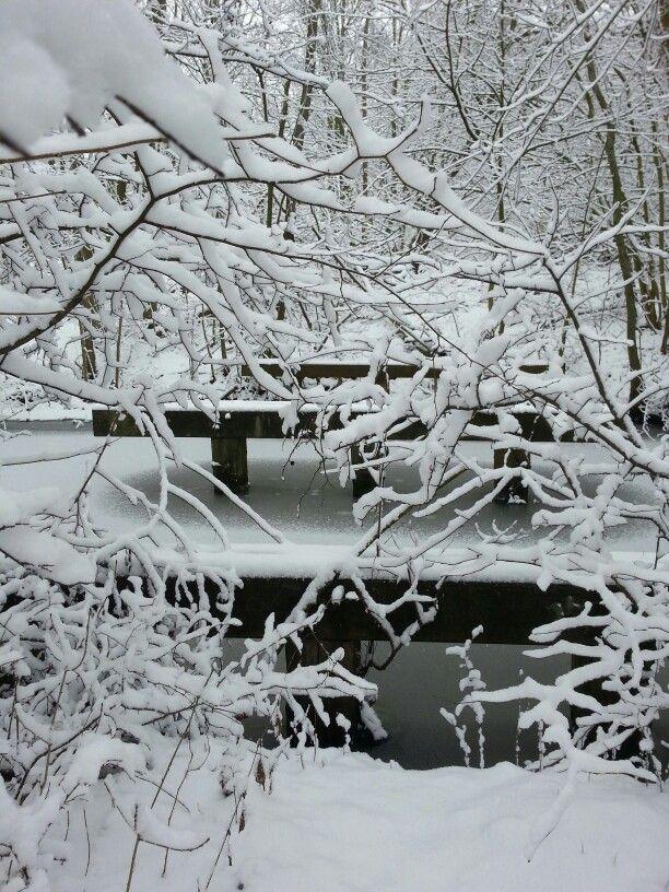 #Sneeuw