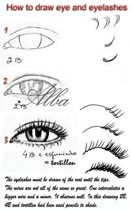 Eye And Eyelashes Drawing Reference Guide | Drawing References and Resources | Scoop.it