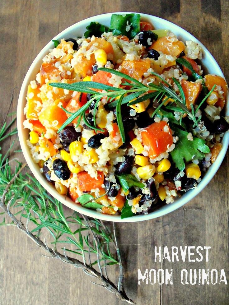 harvest moon quinoa- butternut squash, apples, celery, tomatoes, corn and black beans