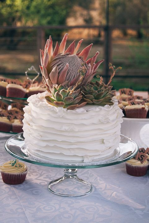 Red velvet cake with ruffles, a King Protea and Echeveria by @Angel's Weddings #gingergoosewedding