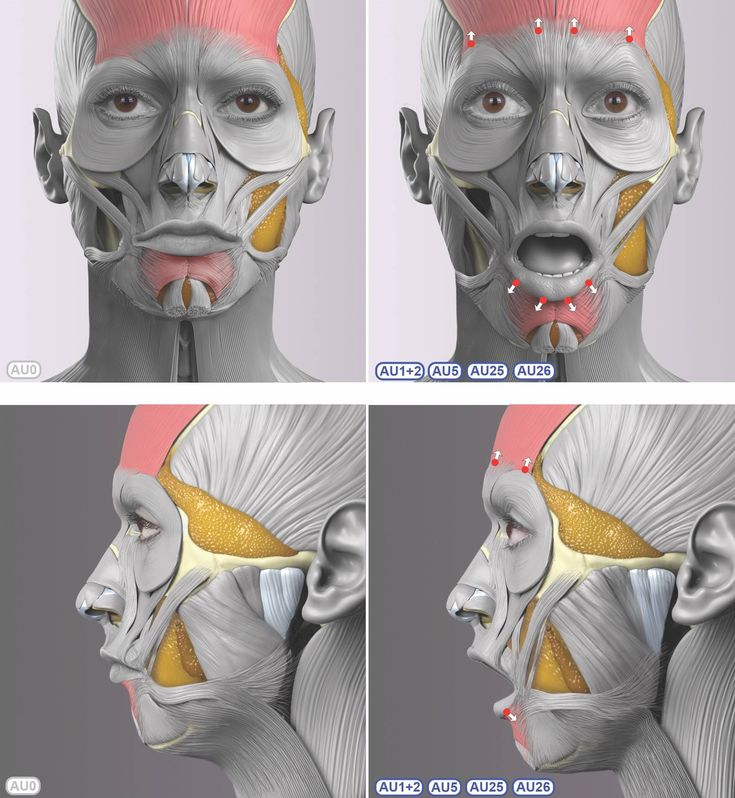 Involuntary facial muscle contraction