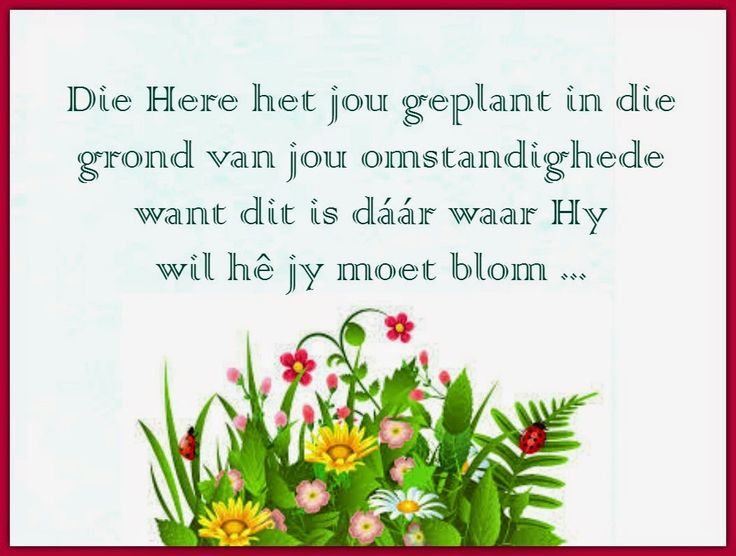 Afrikaanse Inspirerende Gedagtes & Wyshede: Die Here het jou geplant in die grond van jou omstandighede want dit is daar waar Hy wil he jy moet blom ...