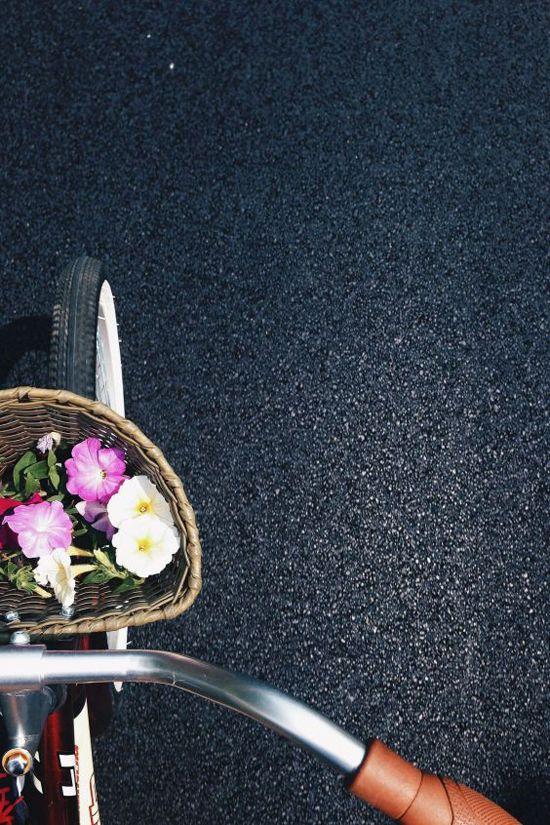 I always wanted a basket, like the one above, on my bike.