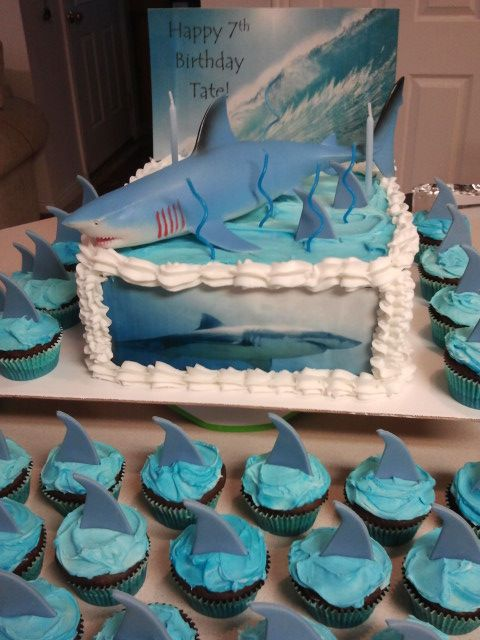 32 Best Images About Shark Stuff On Pinterest Great