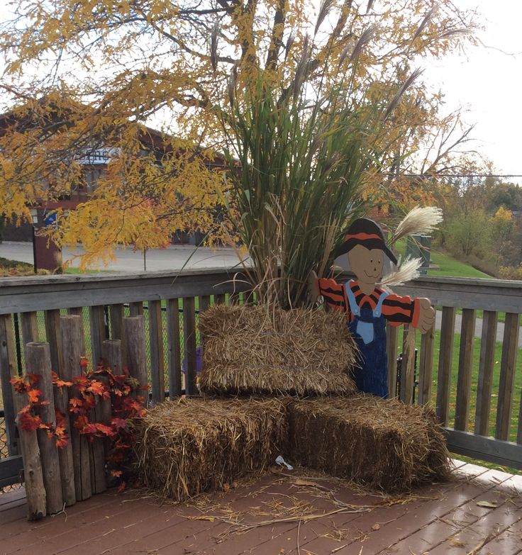Fall picture display