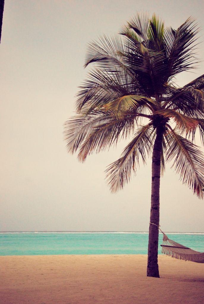 voyage de noce, maldives, voyage de noce maldives, voyage de noce îles, voyage de presse