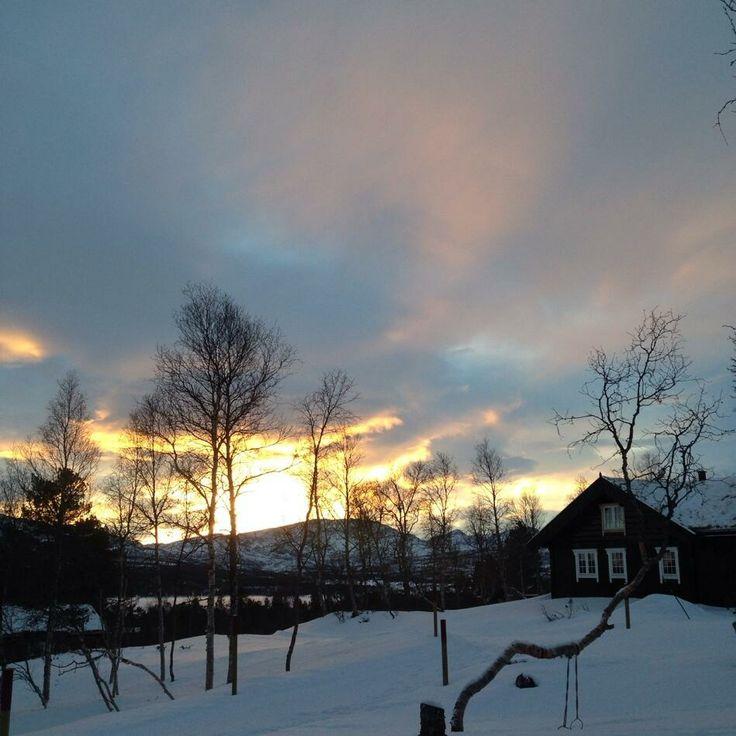 Morgen stemning på lille julaften av moder natur. #jul #hyttami #julpåhytta #hyttejul