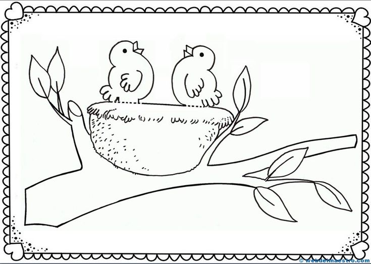 74 best The Spring images on Pinterest Silhouettes, Birds and - best of catfish coloring page