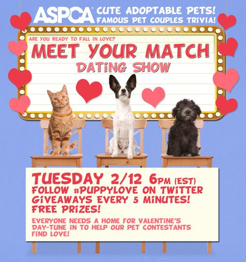 ASPCA to Host Live #PuppyLove Twitter Party for Valentine's Day  Are you ready to fall in love with some adorable, adoptable pets? The ASPCA is hosting a live Twitter party on Tuesday, February 12 at 6:00 pm EST where you can win prizes and meet some precious pups who will steal your heart — just in time for Valentine's Day.  The event is co-hosted by @ASPCA, @TheFluffPo and @DogTipper, so follow those accounts and the hashtag #PuppyLove for all the action. Answer trivia que