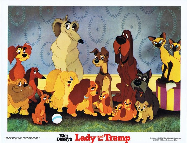 Walt Disney Lady And The Tramp 1955 Lady And The Tramp