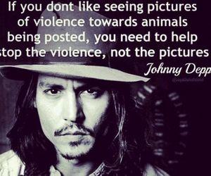 alto a la violencia contra los animales | via Facebook