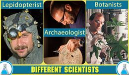 Types of Scientists