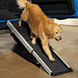 Smart Ramp   Give your dog the independence to get up and down with ease.    Use this ramp to help your dog reach a high tailgate or the back of the SUV, or position it over steps that are hard for him to climb. He'll have an easier time, and you won't strain your back trying to lift him.