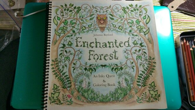 My first page in The Enchanted Forest by Johanna Basford.