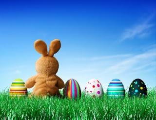 Where is my eggs, bunny ?