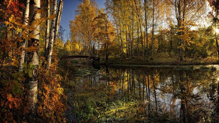 http://www.celitel-anastasiya.ru -- Наша жизнь — путешествие, идея — путеводитель. Нет путеводителя, и все остановилось. Цель утрачена, и сил как не бывало.   http://www.celitel-anastasiya.ru -- Жизнь невозможно запланировать, ее можно только прожить.  http://www.celitel-anastasiya.ru -- Если тебе посылаются испытания, значит, ты их заслужил. И нужно радоваться испытаниям.   http://www.celitel-anastasiya.ru -- Образ жизни начинается с образа мышления. Все остальное — инструменты.