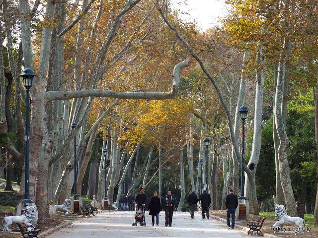 Gulhane Park Restaurant Reviews, Istanbul