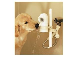 Water Dog Fountain