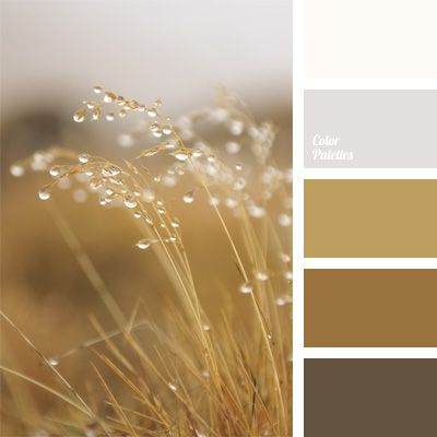 bright brass, color of umber, color solution, copper color, dark brown, monochrome color palette, monochrome palette of brown, pale brown, silver, warm shades, yellow-brown.