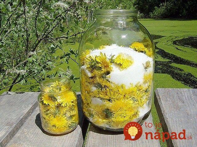 Výborný recept na domáci púpavový sirup, ktorý sa už oddávna používal na liečbu a prevenciu rôznych chorôb. Dokonca sa hovorilo, že v žltých hlavičkách je ukrytá sila samotného slnka. Kto pije púpavový sirup, ten sa
