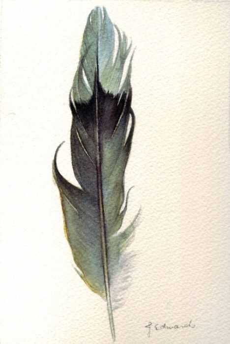 Another beautiful watercolor feather inspiration