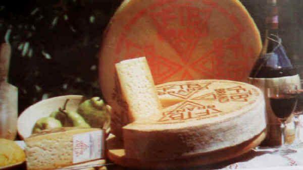 """Formaggio Branzi dell'Alta Val Brembana - È un formaggio simile al """"Formai del Mut"""" e viene ottenuto da latte intero oppure, per non più di metà, da latte scremato per affioramento. Il prodotto finito presenta uno scalzo alto quasi 10 cm e un diametro di 40-45 cm. Il peso delle forme è di circa 15 kg. La crosta è sottile e giallastra, la pasta è leggermente occhiata."""