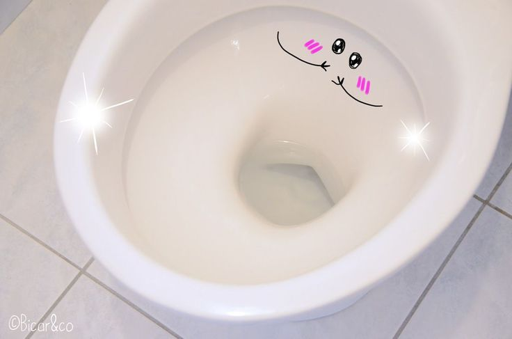 gel WC maison