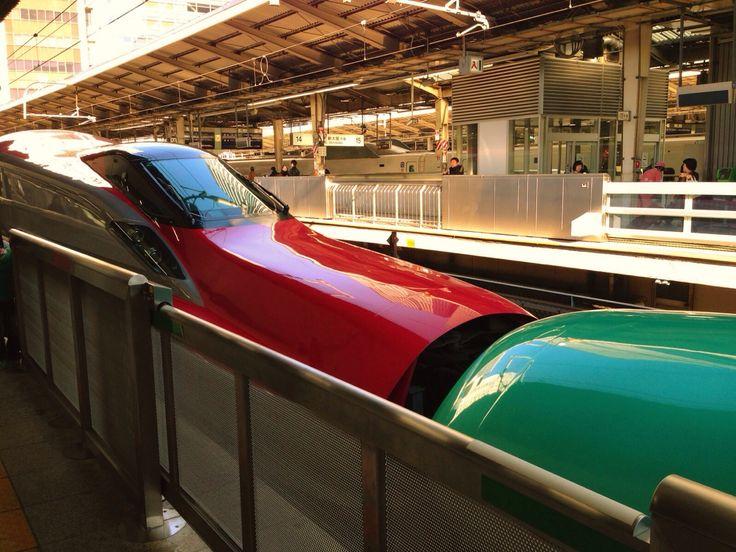 秋田新幹線 スーパーこまち E6系 & 東北新幹線 はやぶさ E5系 東京駅 / Akita-Shinkansen Super-KOMACHI Super Express E6-series & Tohoku-Shinkansen HAYABUSA Super Express E5-series, Tokyo Sta.
