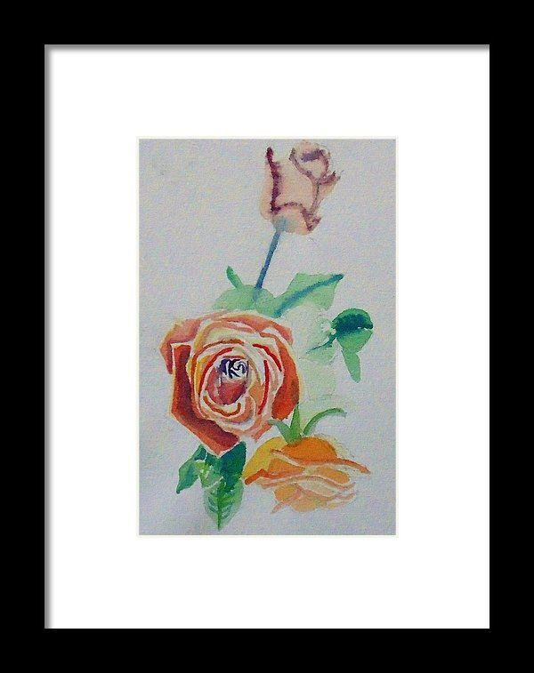 Rose flower watercolour