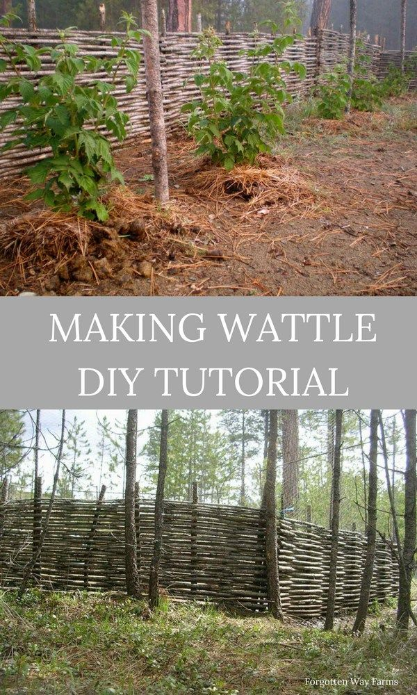 How To Make Wattle Fencing Step By Step For Animal And Garden