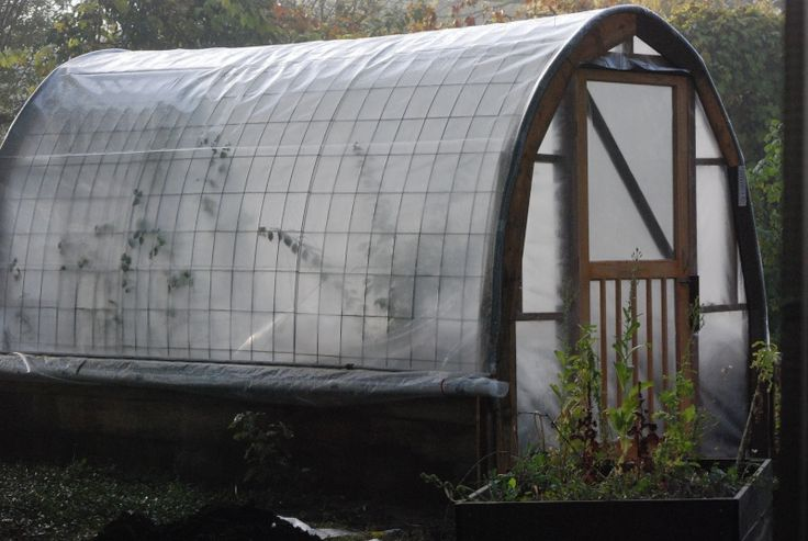cattle panel greenhouse-this is exactly what I need and cattle fence is 16' long and cheap!