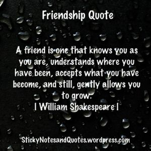 Friendship Quote, love this!