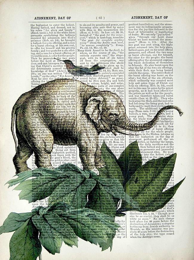 Elephant print.
