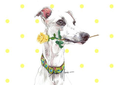 Birthday Fathers Day Gifts Size Option Greyhound Whippet Lurcher Italian Gift