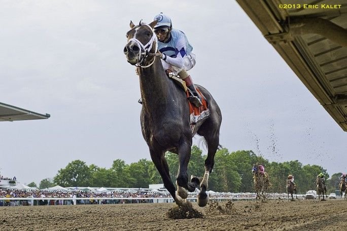 VERRAZANO emphatically proved that he's back in the 3-year-old championship picture as he rolled to a decisive victory in the 46th running of the $1 million William Hill Haskell Invitational (G1) at Monmouth Park on Sunday.  With a crowd of 36,284 on hand roaring in approval, 11-10 favorite Verrazano left the others gasping far behind through the stretch as he cruised to win by 9 ¾ lengths over Power Broker, the largest winning margin in the history of the Haskell.