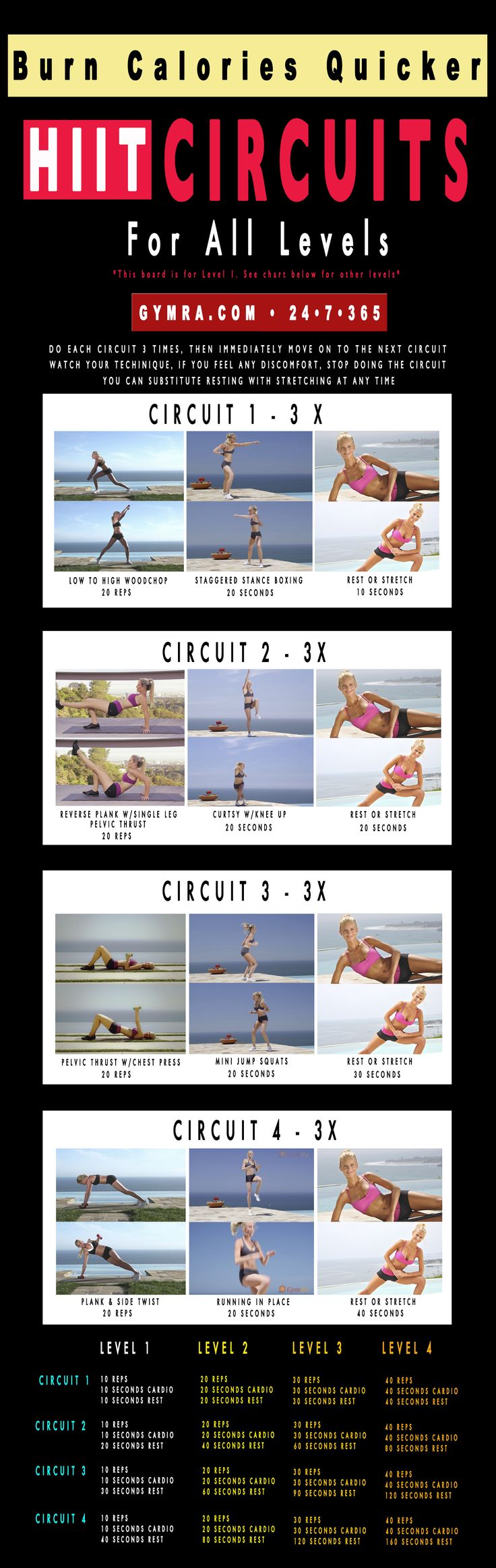 4 hour body workout pdf
