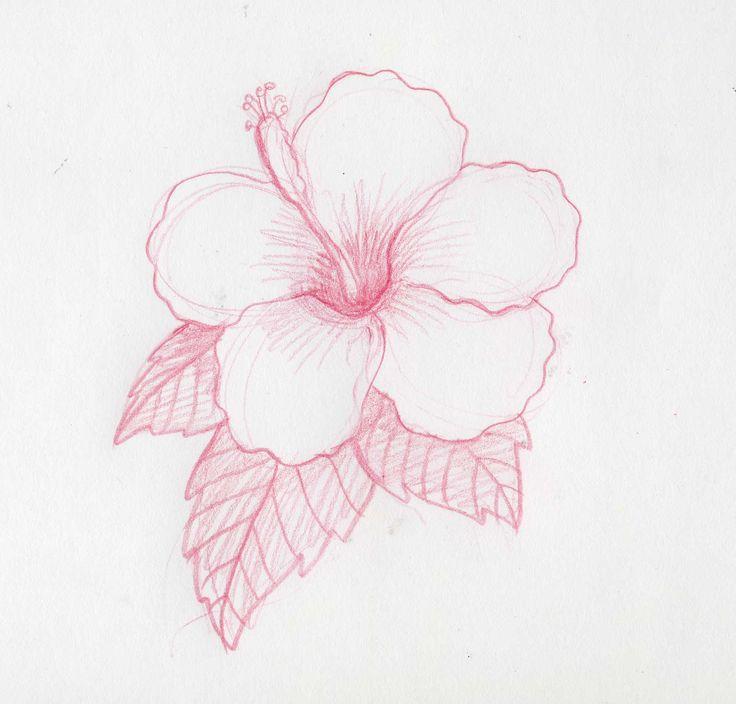 Cómo dibujar flores hawaianas | eHow en Español
