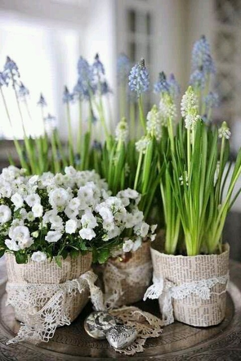Burlap Potted Blooms..