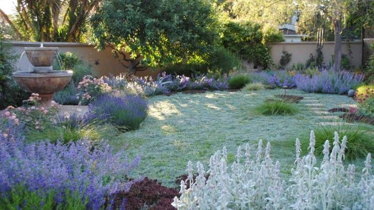 Reinterpreting the 'traditional lawn', a new one was created using beautiful yet drought-tolerantdymondia.