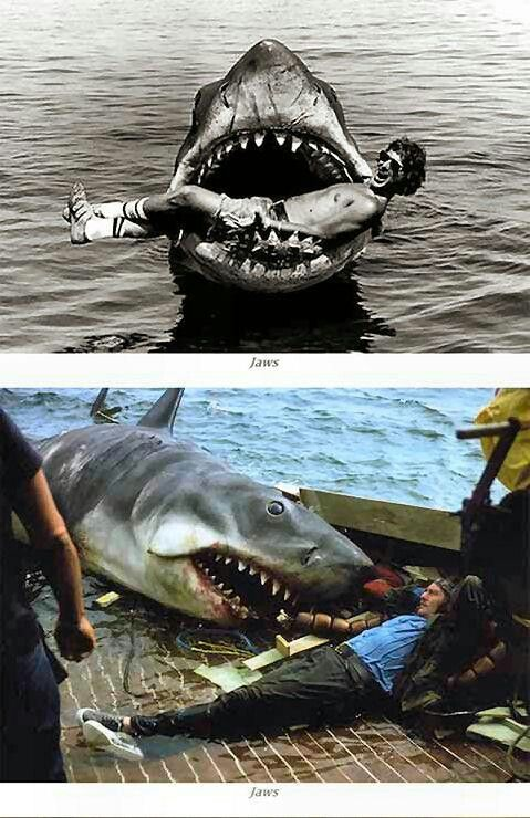 """Jaws"" by Steven Spielberg Essay Sample"