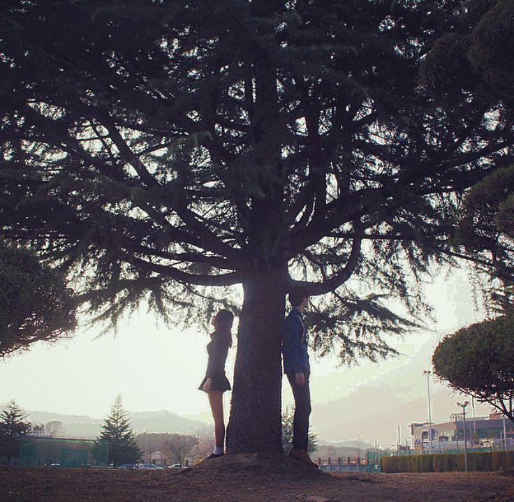 나무밑 커플