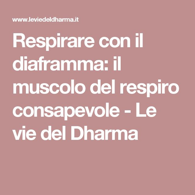 Respirare con il diaframma: il muscolo del respiro consapevole - Le vie del Dharma