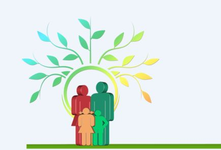 Looking for a New Family Tree Program? A Detailed Guide to the Top 6 Choices