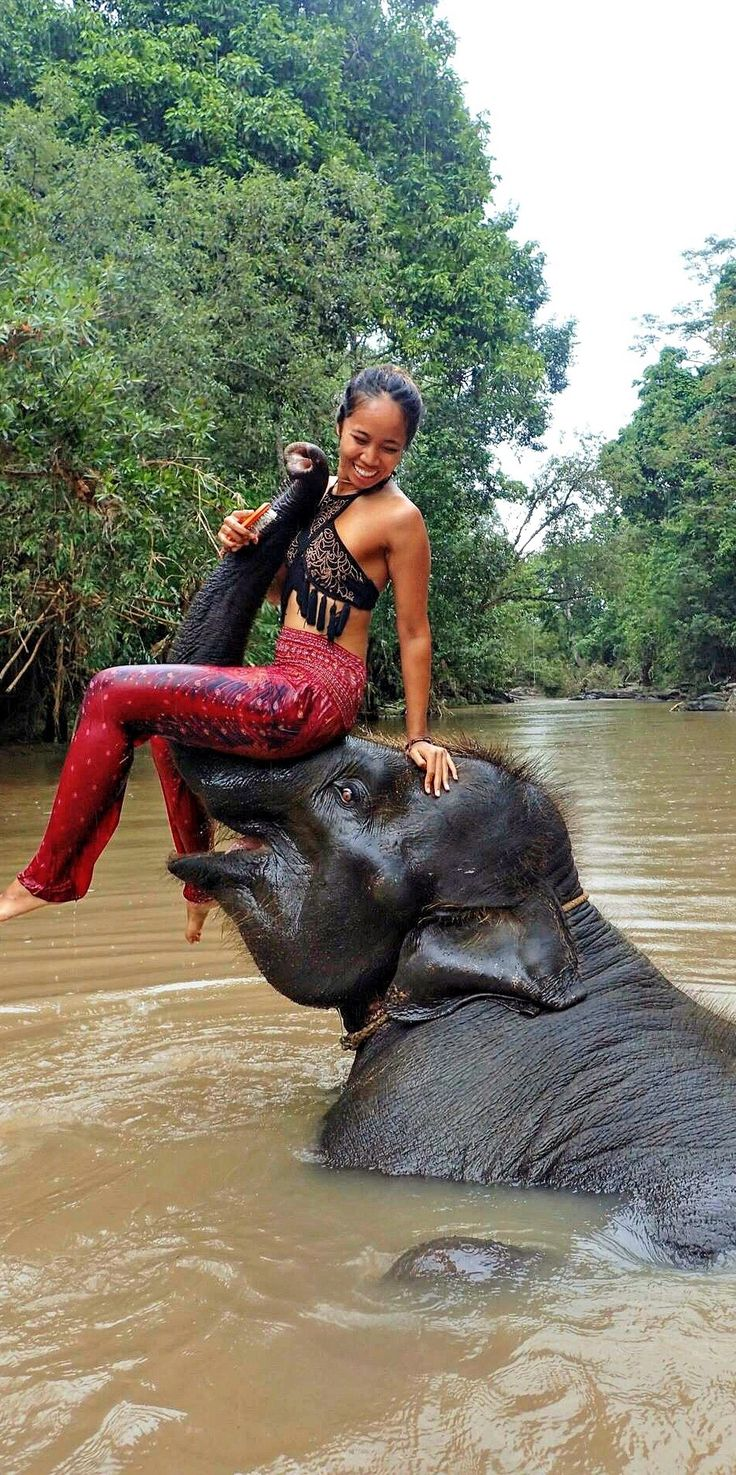 Lovely @meloweeniee in Coral Pink Peacock harem pants interacting with rescued elephants at Chai Lai Resort in Chiang Mai, Thailand!