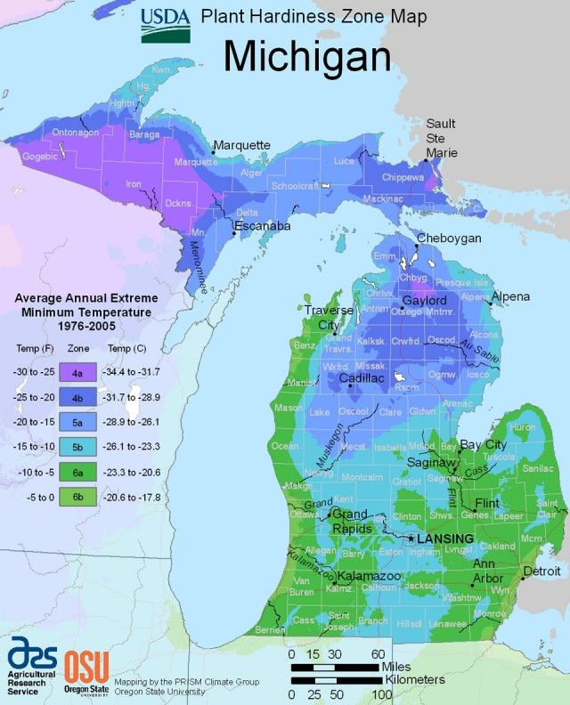Michigan Hardiness Zone Map Reliable Plants and Hardy ...