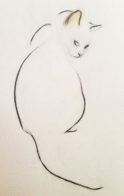 Kellas Campbell: Line drawing of cat