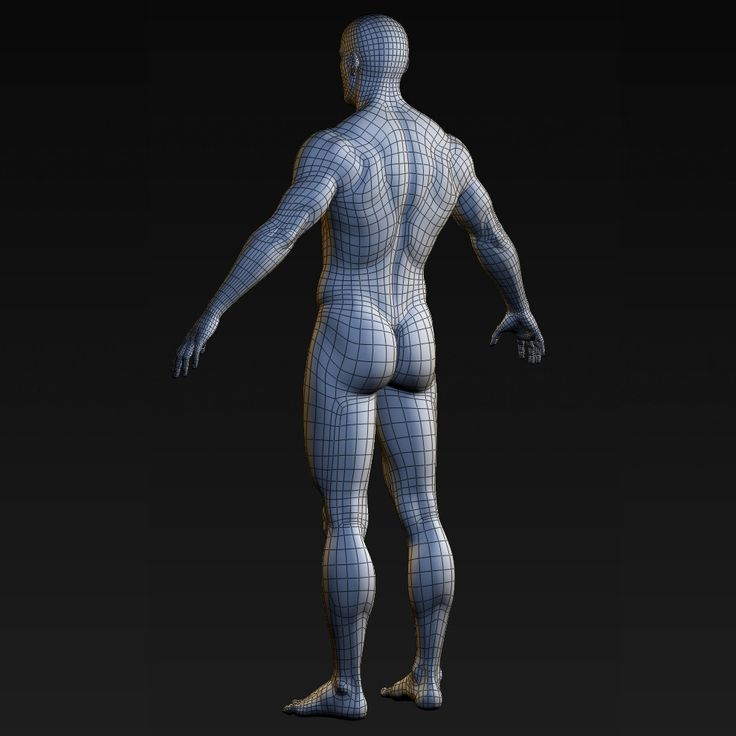 realistic male body character 3ds