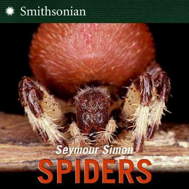Spiders are one of the most familiar animals in the natural world, yet their biology and lifestyles are poorly known to the general public. The large orb webs in vegetation are a good indicator of the