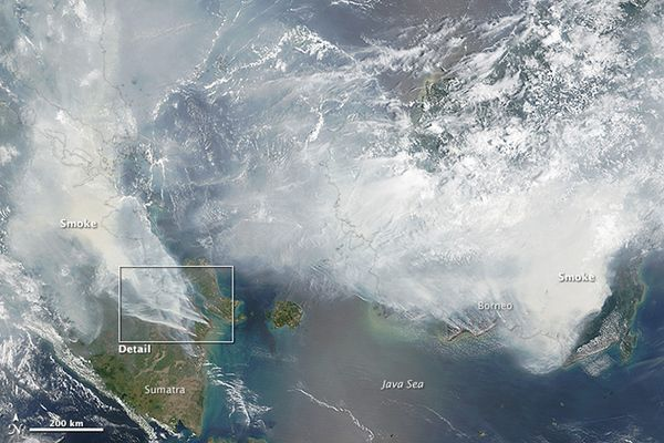Planet Funder - Borneo and Sumatra Fire Emergency